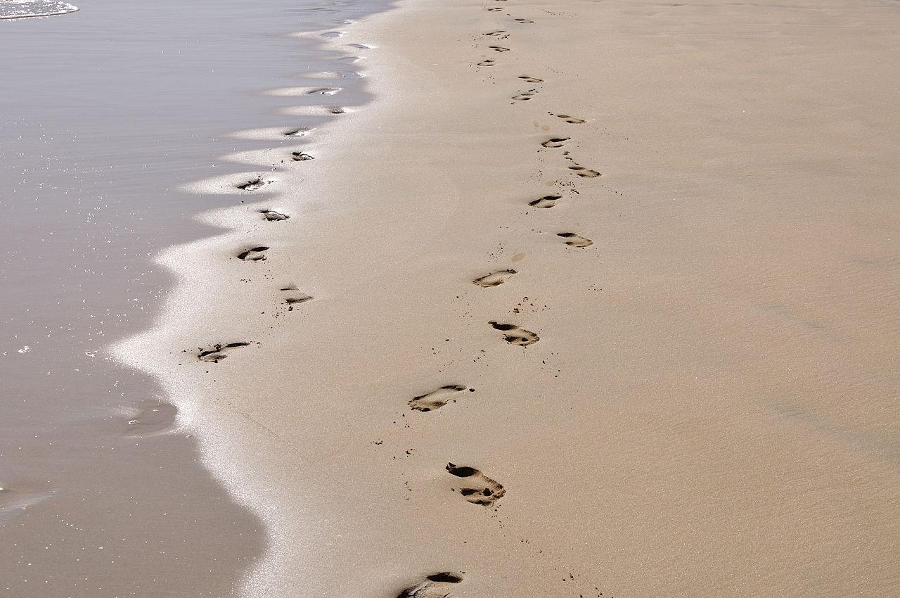 Žingsniai pajūrio smėlyje